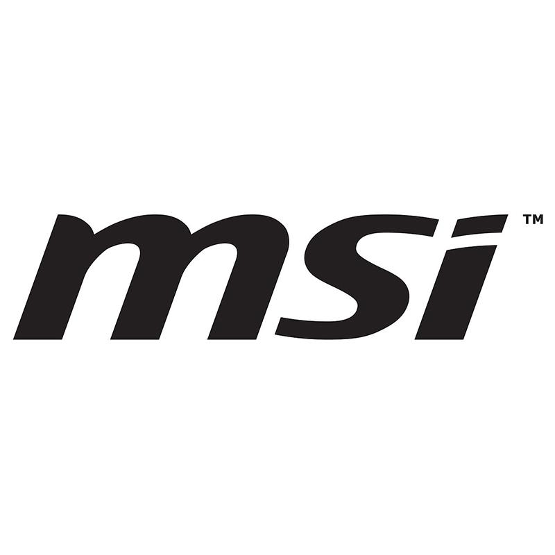 logo_msi.jpg